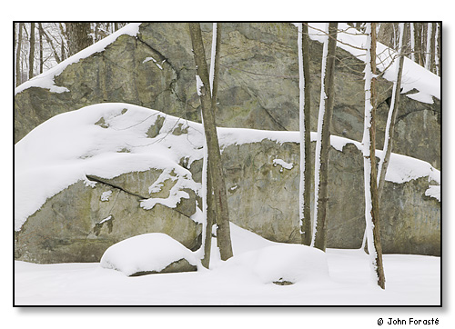 Lincoln Woods Winter Rhode Island